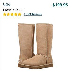 Class tall Uggs